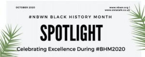 celebrating excellence during black history month